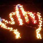 Middle Finger Christmas Lights Win Court Case
