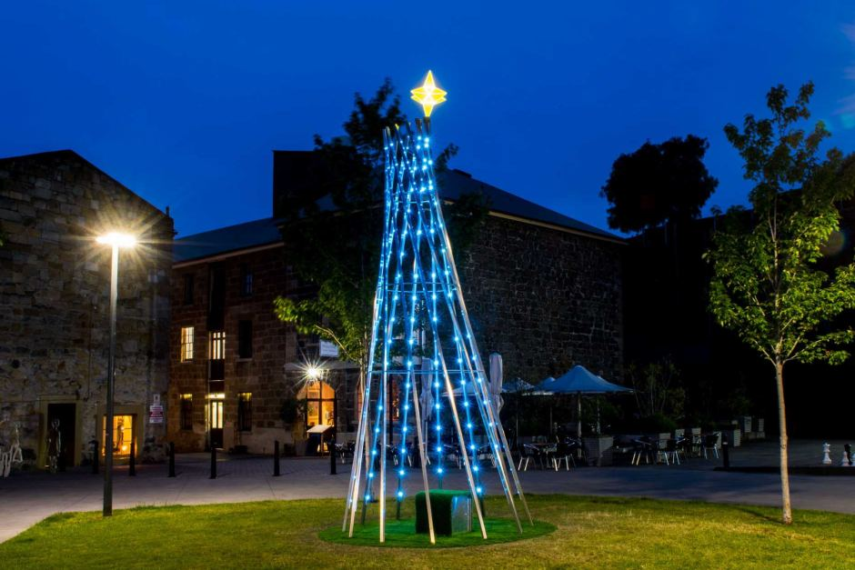 Ugly Australian Christmas Tree Rejected Again